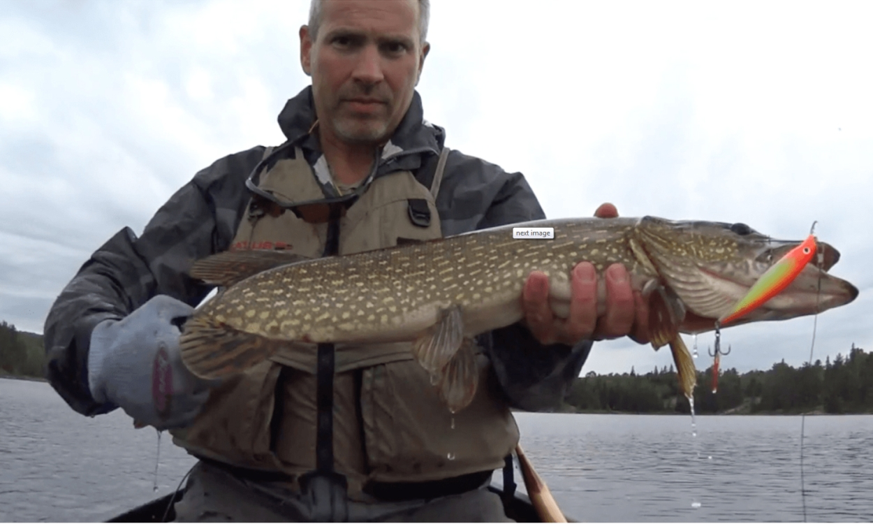 Fishing in killarney provincial park for Northern pike fishing